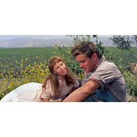 Saturday 22 Sept @4pm | EAST OF EDEN