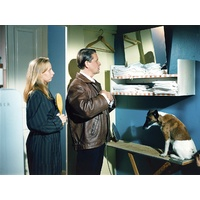 Fri 6 July@8.15pm | Aki Kaurismäki - Drifting Clouds